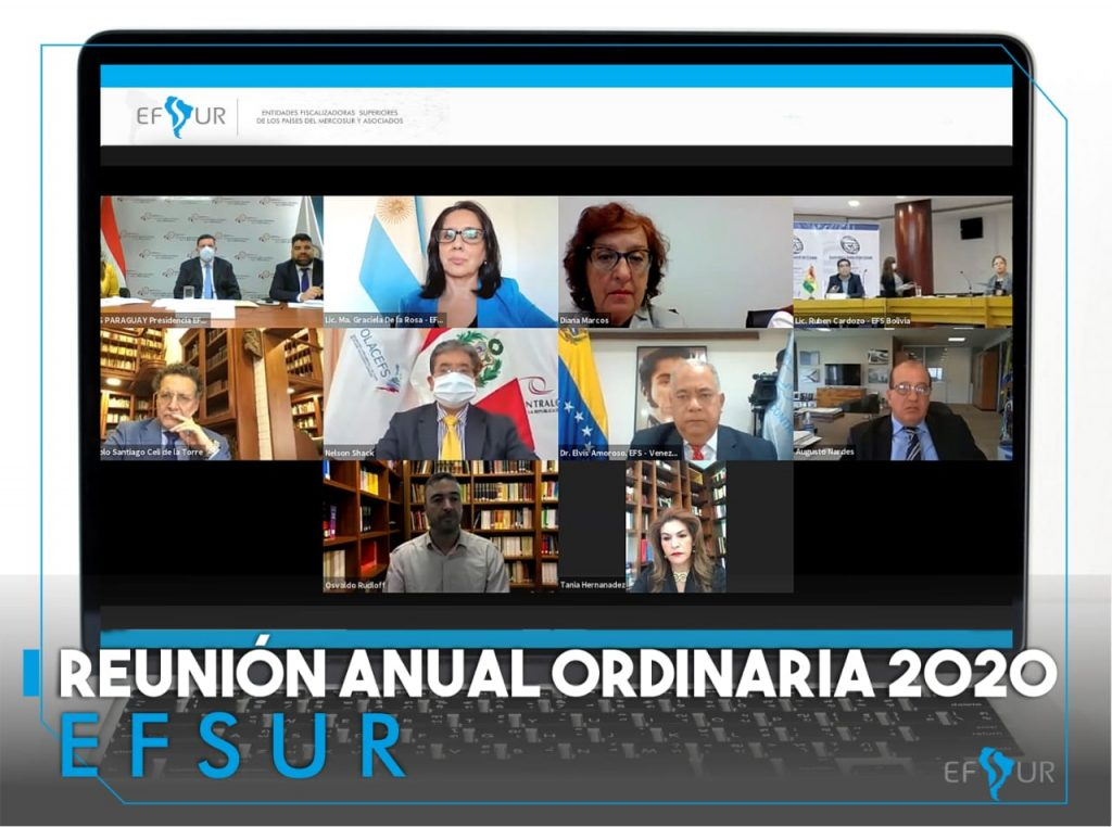 Se desarrolló exitosamente la Reunión Anual DE EFSUR